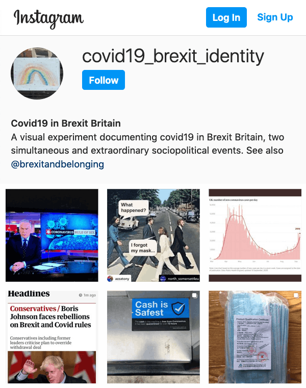 Covid-Brexit-Identity Instagram overview